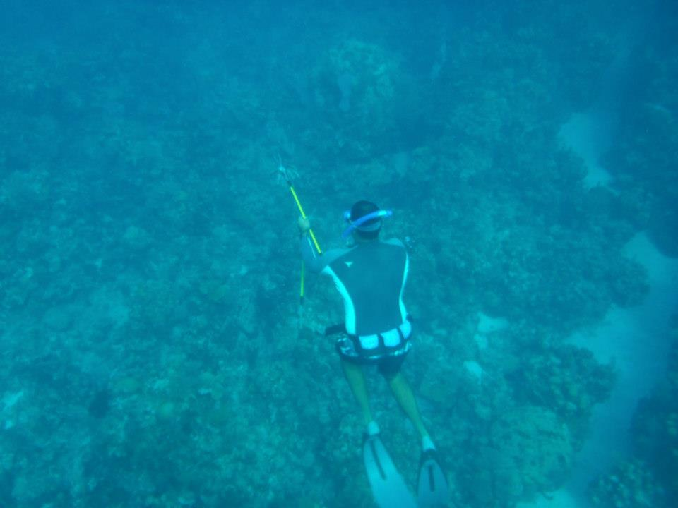 Spearfishing Lionfish in Roatan